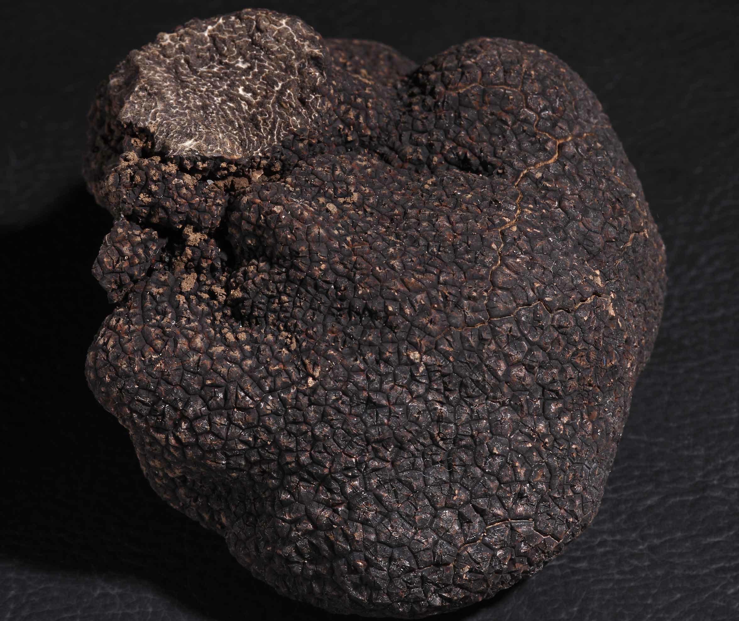 truffe-noire-astuce-chef