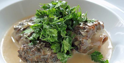 fricassee-morilles-deux-secrets-blog-chef-jean-pierre-vigato