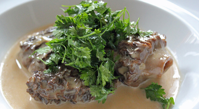 fricassee-morilles-recette-video-chef-jean-pierre-vigato2