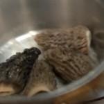 fricassee-morilles-deux-secrets-chef-jean-pierre-vigato