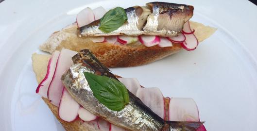 sardines-en-boite-aperitif