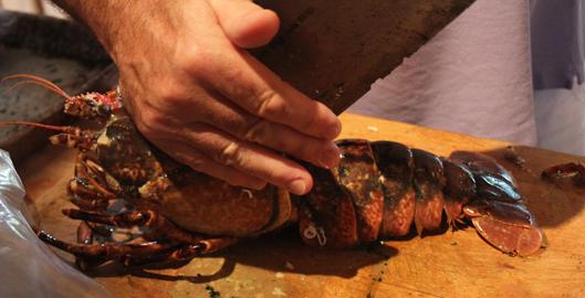 recette-homard-breton-grille-9