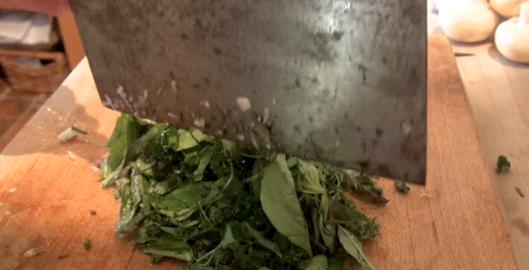 recette-tomates-farcies-1