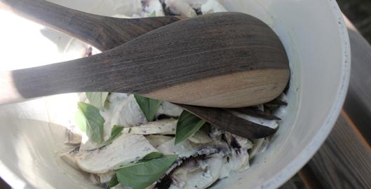 salade-de-champignons-de-paris-creme-fraiche-blog