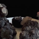 recette-simple-avec-truffe-noire